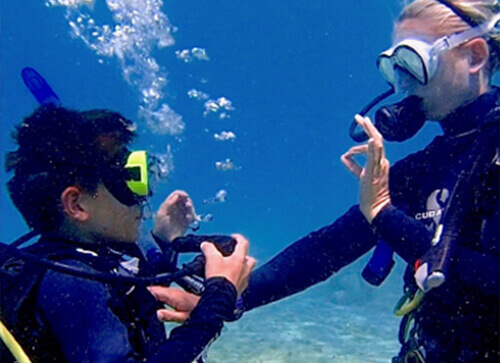 Learn to dive - Indigo Divers Grand Cayman Image 4