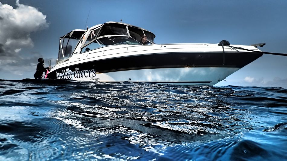 The Cat's Meow - our 28ft Searay Bow Rider