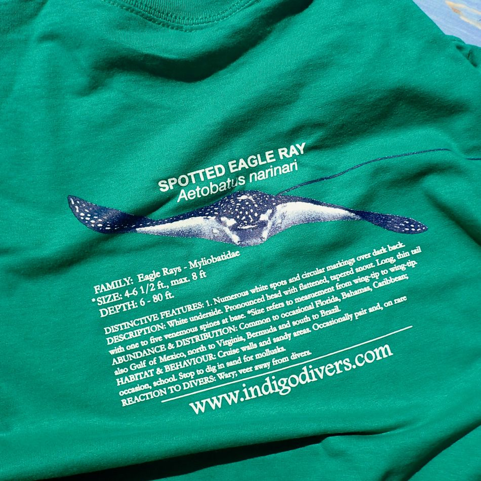 Spotted Eagle Ray - Indigo Divers T-Shirt