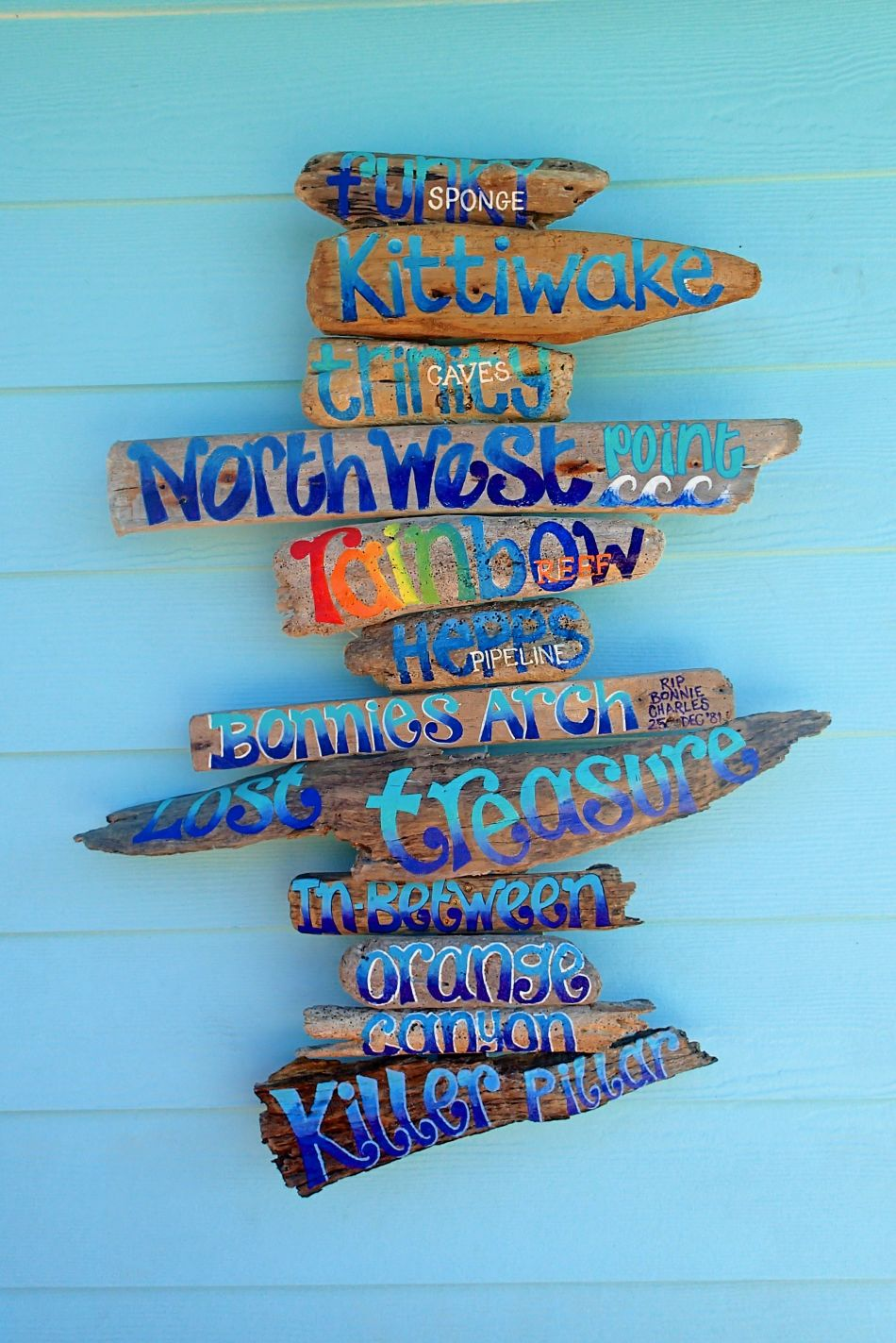 Kate's hand painted driftwood, detailing West side dive sites.