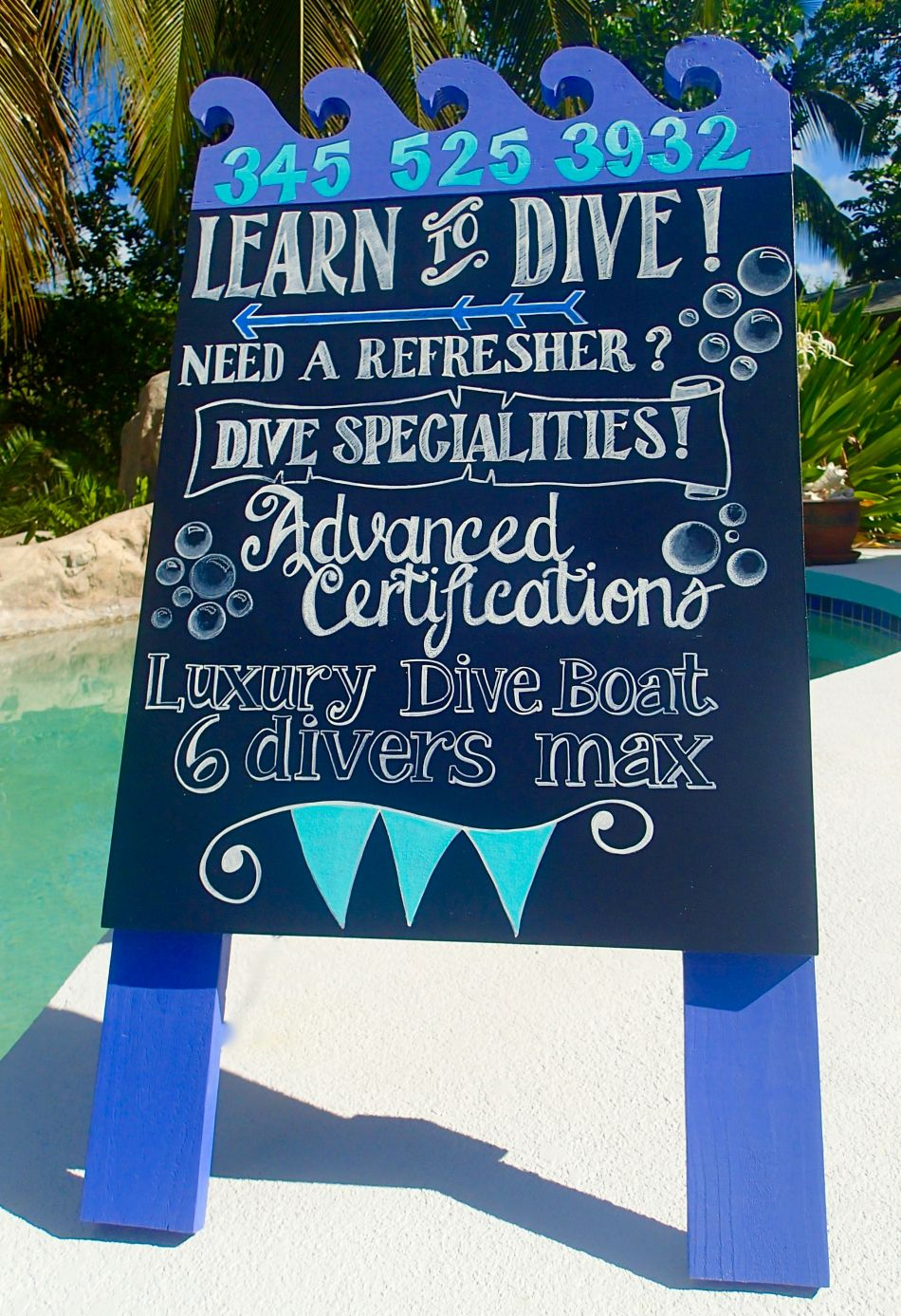 Dive Instruction